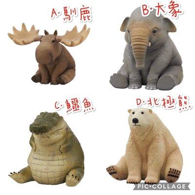 (整套賣場)現貨 KITAN RBEN STUDIO 胖胖動物 扭蛋 轉蛋 公仔 肥胖動物 胖動物 鱷魚 大象 北極熊 馴鹿 整套販售 單款~可挑款~