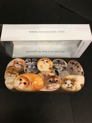 眼鏡盒 儲物盒 購自台灣 全新💓 貓咪 glasses box container NEW kitten kitty cat pattern animal