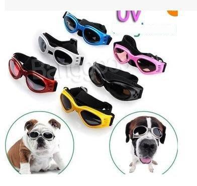 【寵物眼鏡-墨鏡-AC-鏡框-14*4.5cm-脖圍20-70cm】狗狗太陽鏡防嗮防風 6色顏色隨機-79014