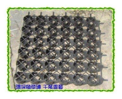 環保植草磚(特級塑膠) - 千葉園藝有限公司