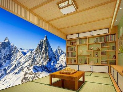 客製化壁貼 店面保障 編號F-641 雪季冰山 壁紙 牆貼 牆紙 壁畫 背景牆 星瑞 shing ruei