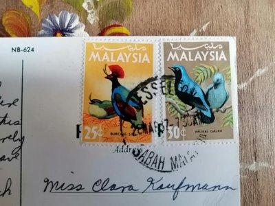 🇲🇾老明信片 實寄明信片 🇲🇾馬來西亞寄🇺🇸美國 鳥類圖案郵票 郵戳