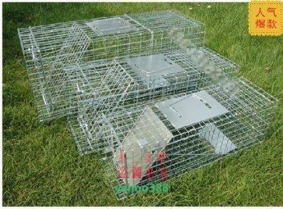 美學141折疊式捕貓籠誘捕籠黃鼠狼籠捕狗籠捕兔籠松鼠籠捕貓器 高靈敏度 捕❖0776
