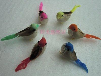 12隻仿真鳥 假鳥 塑膠貼真羽毛仿真鳥 小鳥裝飾品