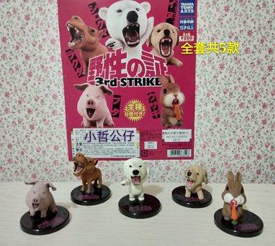 【小哲公仔】新品 T-ARTS (扭蛋) 嘶吼的野生動物P3 全套共5款250元<現貨>