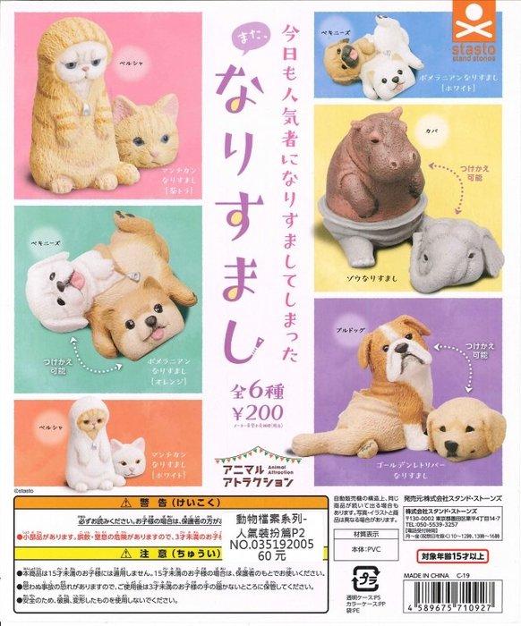【扭蛋屋】動物檔案系列-人氣裝扮篇P2《全6款》