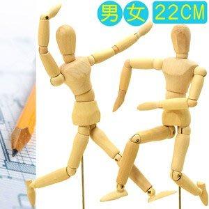 8吋關節可動木頭人22CM素描木製人偶22公分小木偶關節可活動式木人工具人體模特model D057-03【推薦+】