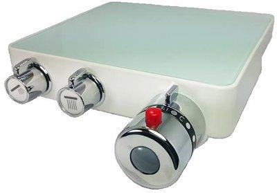 玻璃平台恆溫水龍頭   溫控龍頭 控溫龍頭 沐浴水龍頭 (旋轉式出水 方形白)