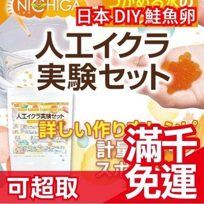 【DIY 鮭魚卵】日本 NICHIGA 自由研究國小實驗課 盒玩 食玩 食戟之靈 知育菓子 知育果子 ❤JP