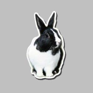 【SPSP】道奇兔 荷蘭兔 兔子 寵物 3M貼紙 防水貼紙 疤痕貼紙 機車貼紙 汽車貼紙 旅行箱貼紙 動物貼紙 車身貼紙