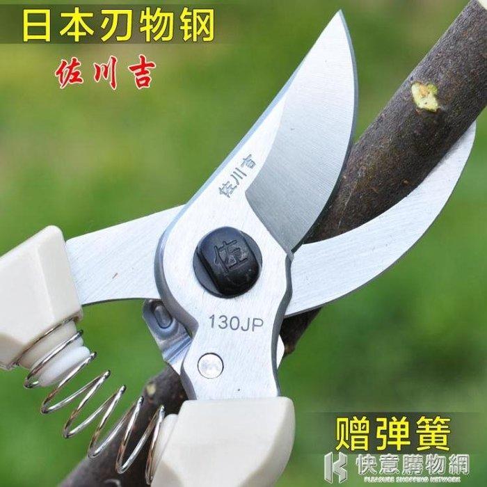 園藝剪刀修枝剪樹枝剪子果樹工具園林手剪粗枝剪花枝剪整枝剪 igo