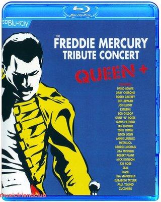 高清藍光碟 Queen Freddie Mercury 群星紀念皇后主唱演唱會  (藍光BD25G)