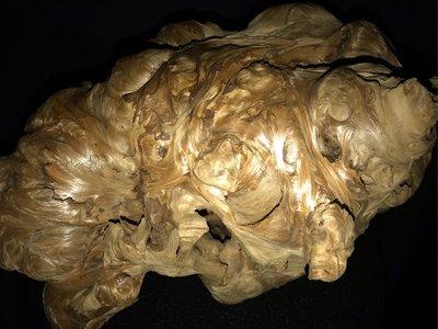 台灣檜木紅檜鳳尾樹瘤榴(原價68000元促銷價58000元)