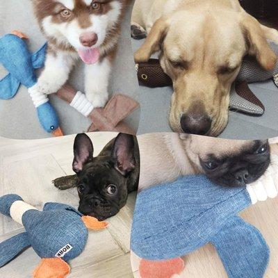 狗狗玩具泰迪小型犬金毛大狗幼犬大型犬小狗磨牙耐咬發聲寵物用品
