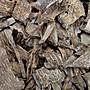 [福田工藝]芽莊沉香.蟲漏.螺殼/香味濃醇油脂凝厚沁涼/醍醐灌頂本標30g[芽莊3]