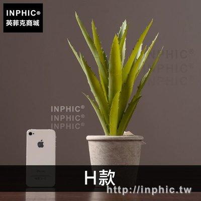 INPHIC-室內裝飾品擺設客廳多肉擺件綠植模擬盆栽盆景植物-H款_PTY8
