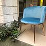 【 一張椅子 】水金金 艾爾莎 華麗餐椅...