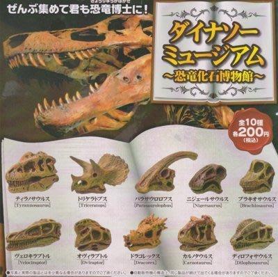 【奇蹟@蛋】YELL(轉蛋)恐龍化石博物館   大全22種整套販售