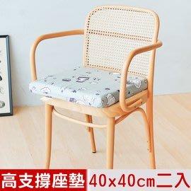 【樂樂生活精品】【奶油獅】森林野餐-台灣製造-久坐專用二合一高支撐記憶聚合紓壓坐墊(二入) 免運費! (請看關於我)