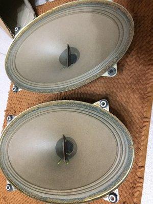 罕見 歌蘭蒂 Grundig 全音域喇叭Alnico天然磁鐵