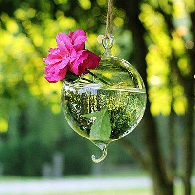 ~喵喵的小窩~懸掛式雙掛勾玻璃吊球小花瓶 水培插花 歐式家居裝飾