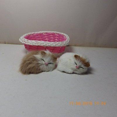 紫晶宮***迷你小小睡猫高6cm***品質保證價格便宜