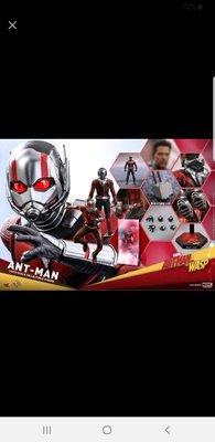 30/6首日訂單 (尾數$990) hottoys hot toys antman and wasp ant-man MMS497