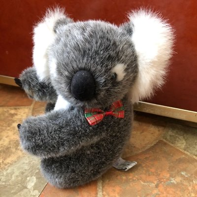 澳洲購回超可愛的紅領結無尾熊/無尾熊玩偶 絨毛玩偶 公仔 澳洲製造 療癒解憂商品