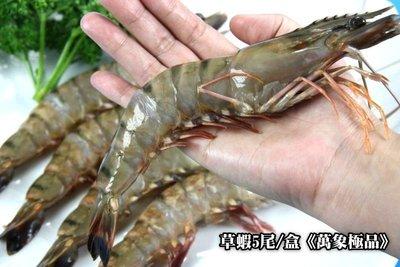 【萬象極品】草蝦5尾 / 約280g±5% / 盒~殼薄肉多~肉質鮮美結實~口感一流~