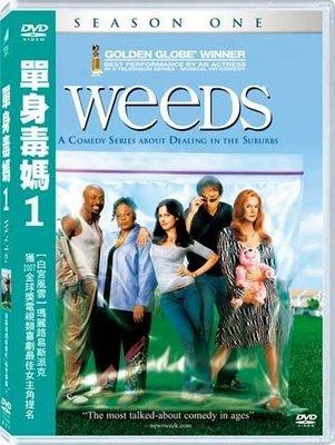 (全新未拆封)單身毒媽 WEEDS 第一季 第1季 DVD(得利公司貨) 限量特價
