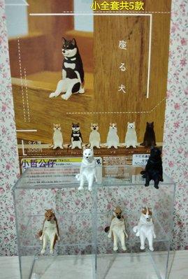 【小哲公仔】新品KITAN (扭蛋) 不可思議的動物P2-坐姿犬 小全套共5款399元<現貨>