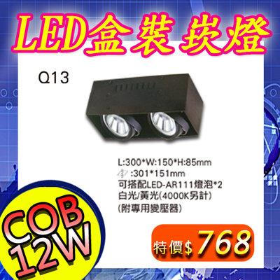 【阿倫燈具】《YQ13-C12》LED COB 12W盒裝崁燈 無框 隱藏式 崁孔30*15公分 可調角度 聚光 2燈