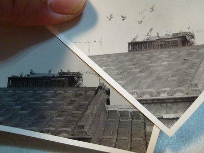 191124~台灣賽鴿必備~屋頂鴿舍~相關特殊(一律免運費---只有各一張)老照片