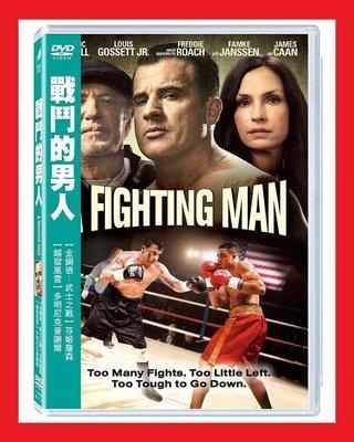 [DVD] - 戰鬥的男人 A Fighting Man ( 得利正版 )