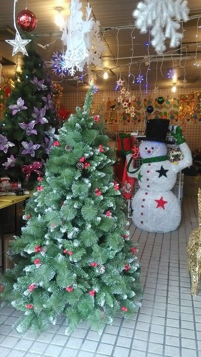 洋洋小品【4呎PVC尖頭紅果松針樹(裸樹)120CM高】桃園平鎮中壢 聖誕佈置 聖誕樹 聖誕燈 聖誕花圈 聖誕球 聖誕