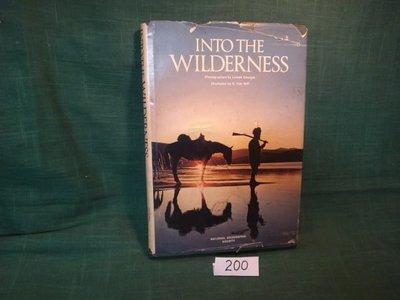 【愛悅二手書坊 19-29】INTO THE WILDERNESS