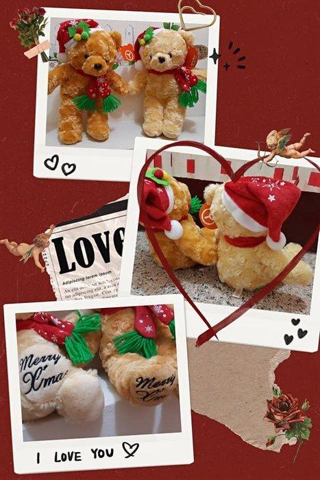泰迪熊娃娃~泰迪熊~聖誕玫瑰泰迪熊~~聖誕泰迪熊娃娃 聖誕款~聖誕熊 聖誕禮物送包裝