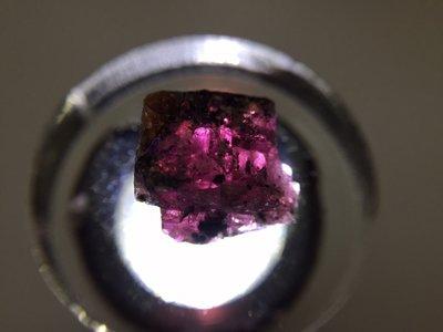 【Texture & Nobleness 低調與奢華】精品礦區 原礦 標本 -紅藍寶共生礦-2.28克