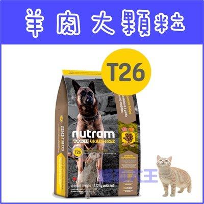 **貓狗大王**【贈150元禮卷】紐頓nutram/無穀全能-潔牙犬 羊肉配方T26/1.36kg