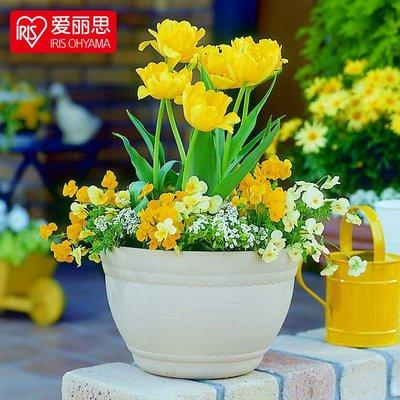 (可開發票)免運愛麗思IRIS 日本PROVINCE 室內外創意圓形塑料花盆 陽臺盆景花盆