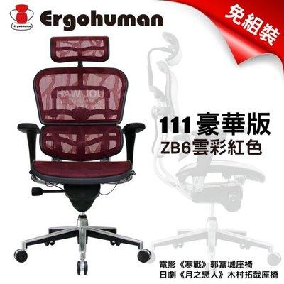 【豪優】Ergohuman 111豪華版 - 頂級雲彩網《雲彩網ZB2黑色》贈品好禮六選 另售單桿及PLUS歡迎詢價