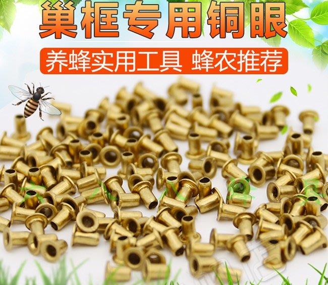 【688蜂具】巢框專用銅眼 銅孔眼 巢框眼 穿絲孔 純銅 50克約700個 養蜂工具 蜂具 巢礎 現貨供應