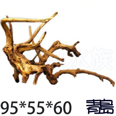 五1↓。。。青島水族。。。J-014煙燻沉木 黃金流木 莫絲 莫斯 默思 青龍石 造景==95*55*60cm