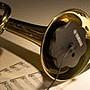 【金聲樂器】全新Yamaha SB7X Pickup Mute 小號 小喇叭 拾音弱音器組 SILENT Brass