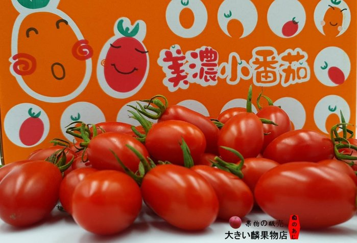 ※宏麟水果行※ 產地直銷 美濃玉女蕃茄5斤裝 本島免運2件以在折價
