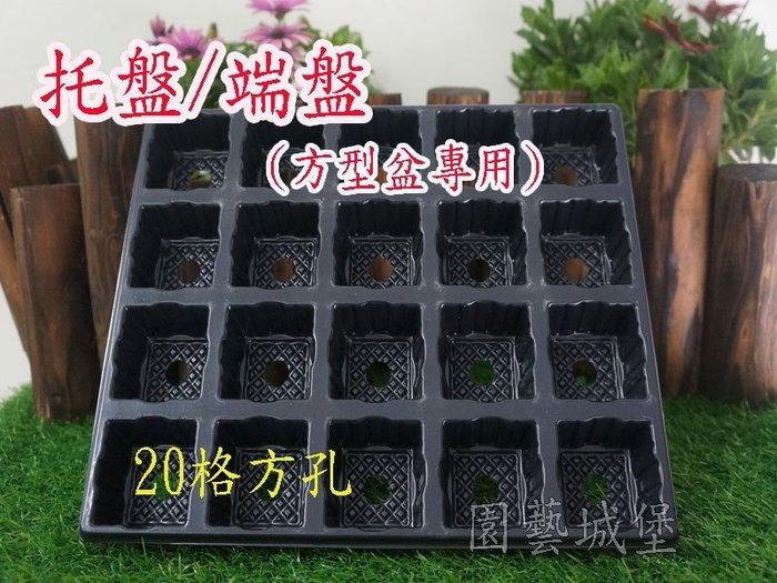 【園藝城堡】托盤、端盤(方型盆專用) ~ 20格方孔