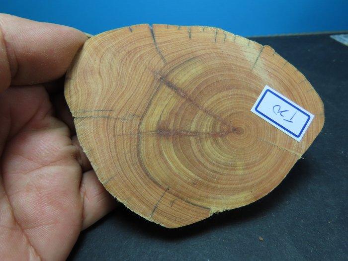 【競標網】高檔天然崖柏原木擺設木座58克(T20)(可當茶杯墊使用)(超低價起標、價高得標、限量一件、標到賺到)