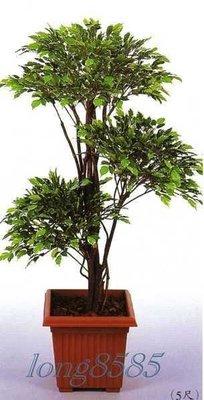 【花宴】人造樹*5尺造型三層夏威夷榕樹*居家擺設~會場佈置~造景景觀