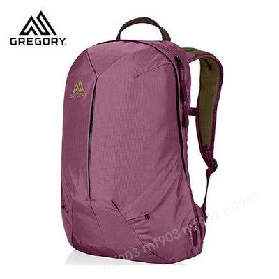 最平戶外品牌 Gregory Sketch 22L Daypack Zin Purple Classic Backpack 經典背包 潮流書包 旅行袋 行貨