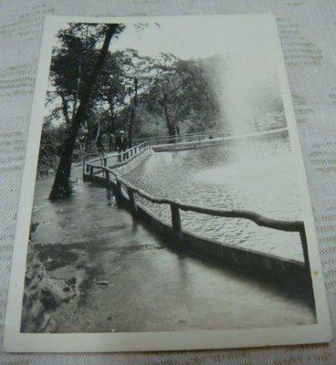 【早期老照片】民國50年代 水池噴水 6.5X9 公分